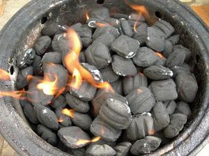 Comment faire mes briquettes de charbon de bois chaud - Briquette de charbon ...