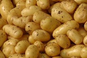 Comment garder les pommes de terre de tournage Brown tout en profitant