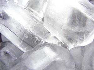 Servant des plats qui garder les aliments froids