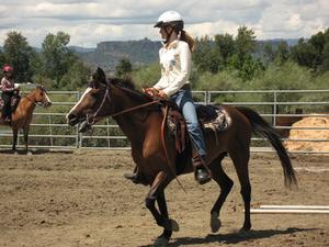 Comment calculer la vitesse du cheval