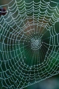 Comment faire une toile d'araignée géante pour l'extérieur de la maison