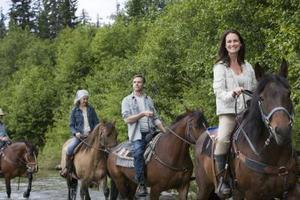 Comment tenir correctement les rênes du cheval