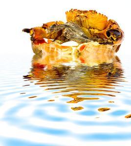 Ce qui gagner le capitaine d'un bateau de crabe ?