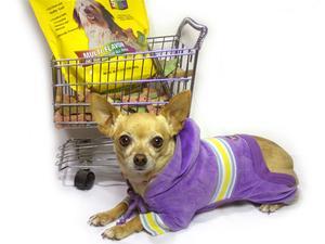 Alimentation Canine appétente pour estomac sensible & Allergies