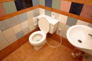 comment faire pour tuer les bact ries sur des surfaces de salle de bain. Black Bedroom Furniture Sets. Home Design Ideas