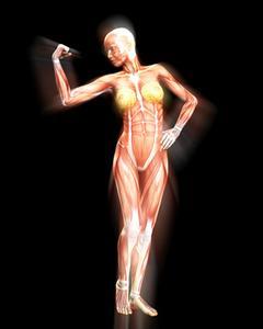 Comment construire le tonus musculaire rapide