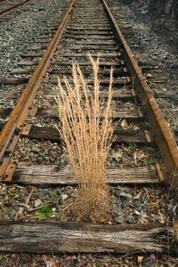 Idées d'aménagement paysager : Murs avec des traverses de chemin de fer
