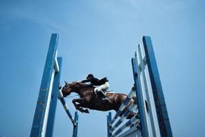 Comment tresser un cheval crinière & queue avec ruban