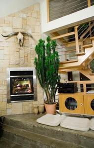 plantes d 39 int rieur pour les coins sombres. Black Bedroom Furniture Sets. Home Design Ideas