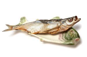 Avantages & inconvénients de pisciculture