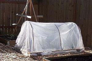 Comment construire une mini-serre