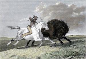 Quels ont été les armes de la tribu Apache ?