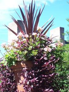 Idées de décoration pour une terrasse extérieure
