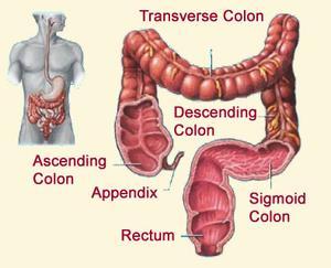 Symptômes du Cancer du côlon gauche