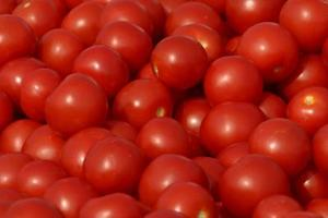 Comment faire pousser des tomates cerise en grappe d'une tomate raisin