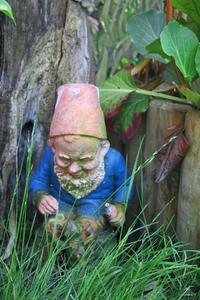 Comment faire des Costumes de Lady Gnomes de jardin