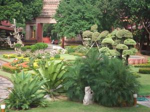 Jardin de tétranyques
