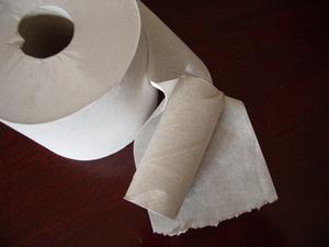 Activités de rouleau de papier toilette