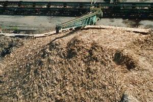 Comment comparer les marques de Compost
