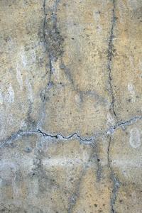 Comment obtenir de termites dans une maison sur dalle de béton