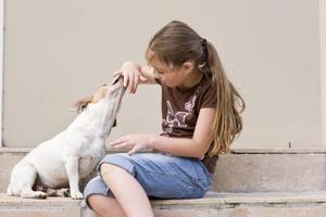 Les effets des plantes toxiques sur la santé canine