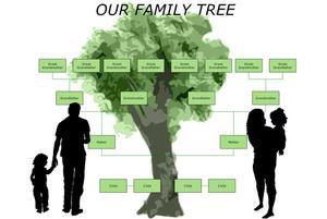 Comment faire un arbre généalogique qui ressemble à un arbre