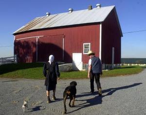 Comment élever une grange Amish