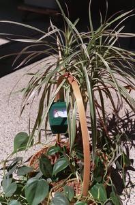 Fabriquer chariot de jardin avec roue - Sel epsom jardin ...