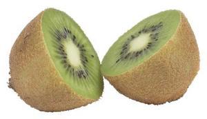 Taux de germination des graines de Kiwi
