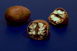 Comment faire pour fertiliser les arbres de noix de pécan à produire des fruits ?