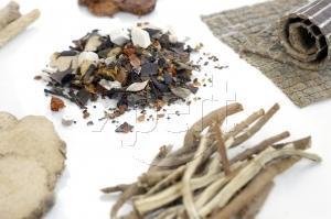Comment cultiver le Ginseng de graines
