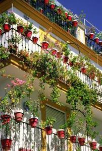 Patio d'escalade Roses