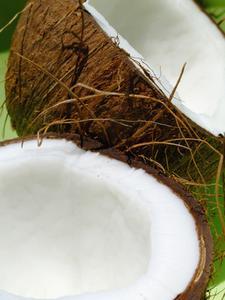 Idées de projets pour le métier de noix de coco