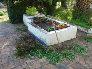 Le meilleur achète pour des lits de jardin surélevé