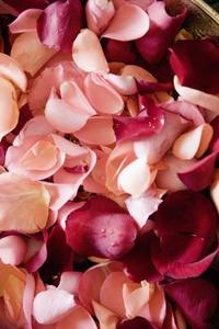 Comment faire des cônes de mettre des pétales de Rose dans pour mon mariage