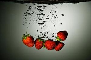 Comment acheter des Plants de fraises chiliens