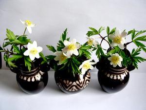 Idées sur quoi mettre dans des Vases à fleurs