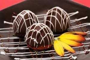 Conseils sur le trempage des pépites de chocolat chocolat & moelleux comme revêtement de truffe