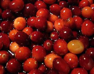Soulagement naturel cystite - condexatedenbay.com