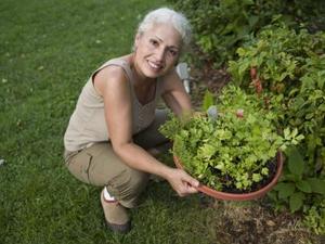 Idées mignon pour jardins d'herbes en pots