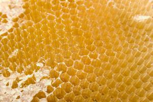 Traitement du bois cire d'abeille