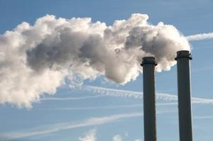 Comment la Pollution affecte-t-elle les plantes dans l'environnement ?
