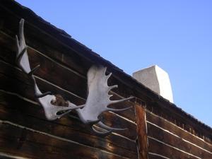 Idées déco orignal pour cabines