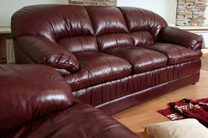 Comment obtenir les rayures du chat au large de meubles en cuir
