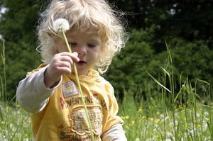 Pourquoi les jeux en plein air est important pour les enfants ?