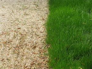 Comment installer bordure de pelouse métal