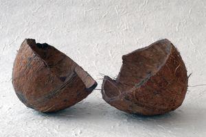 Comment faire des noix de coco Briquettes de charbon de bois