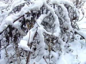 Comment fabriquer un tissu Camo neige