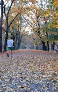 Comment obtenir la Motivation pour aller courir avant de travailler le matin