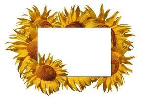 Comment faire des fleurs en papier pour les cartes